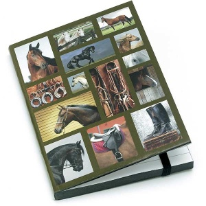 Horse Gallery A6 Notebook
