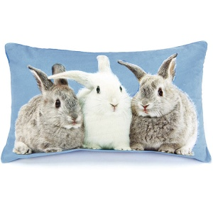Rabbits on Blue Cushion