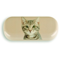 Tabby on Taupe Glasses Case