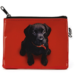 Black Lab on Red