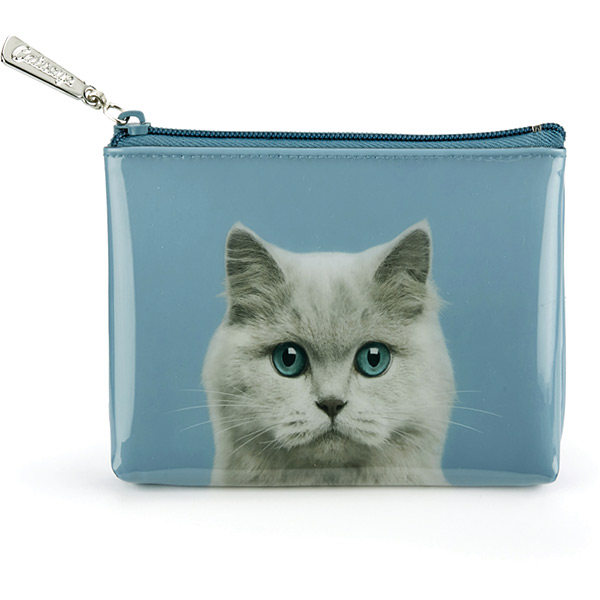 Cat on Blue Pouch