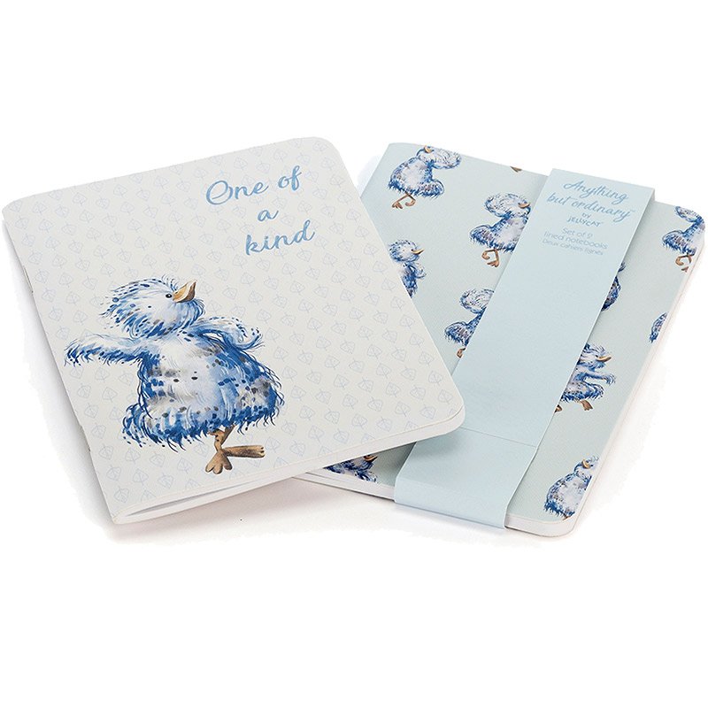 Anything but Ordinary A6 Notebook Set