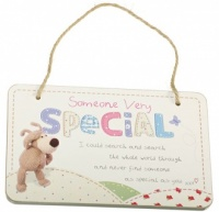 Someone Very Special Wooden Plaque